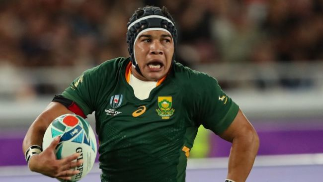 Cheslin Kolbe Rugby World Cup 2019